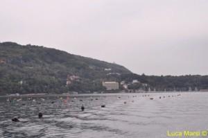 Trieste vista dal mare